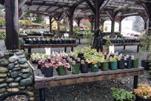 Providence-Farm